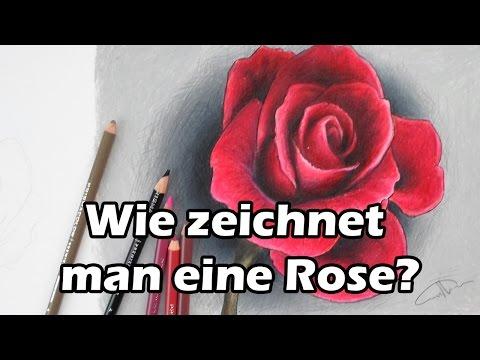 Wie zeichnet man eine Rose? Zeichnen lernen [Tutorial-deutsch]