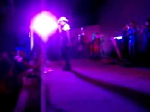 DESEJO MUSICAL EM BRASILEIRA ( Leudo Cds )