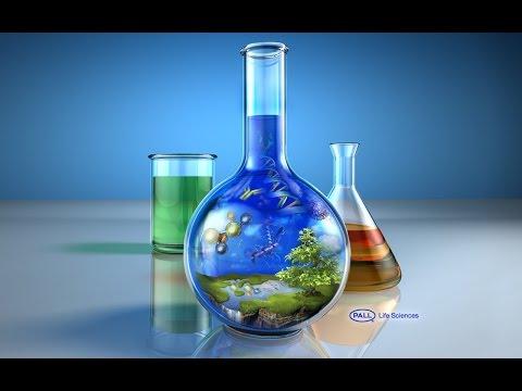 Estimation of Serum Cholesterol by Enzymatic Method Biochemistry Practical