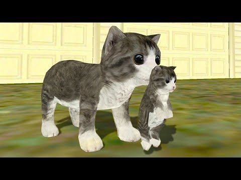 СИМУЛЯТОР Маленького КОТЕНКА _12 Кошка выросла и победила собаку в мультяшной игре _ПУРУМЧАТА