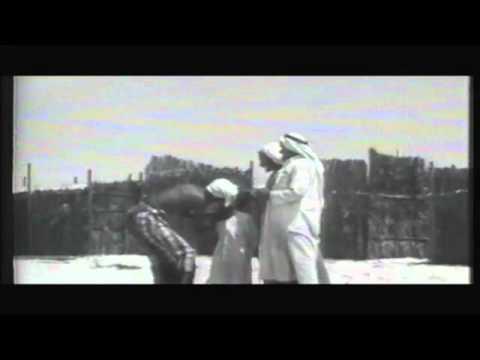 Al Gaffal 2011 P1