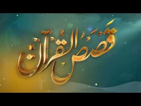 الحلقة (8) برنامج قصص القرآن