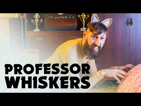 Professor Whiskers - Music Video #2 / Aunty Donna