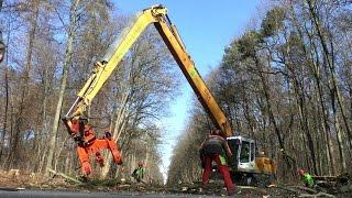 Ein Liebherr 924 Long Reach von Wagner Energieholz sowie ein Noe NF 210 Rückezug sind hier bei einer Verkehrsicherungsmaßnahme zu sehen. Der Liebherr arbeitet auf der halbseitig gesperrten, ampelgeregelten Straße mit einem Woodcracker C350. Damit lassen sich Bäume und dicke Äste Stück für Stück abtragen und zielgenau ablege. Dickere Bäume werden per Kettensäge gefällt und sind mit dem Greifer auch sehr schnell zerlegt und beiseite geräumt. Die Stapel werden anschließend durch das Forstunternehmen Christian Rosenberger mit einem Rückezug aufgeladen und zu einem zentralen Sammelplatz gebracht, wo das Holz dann entweder gehackt wird oder als Stammholz abtransportiert wird.