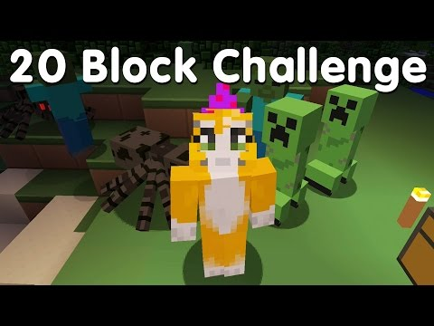 Minecraft PS4 - 20 Block Challenge (1)