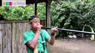 La Selva Amazon Ecolodge & Spa by Boyd Hendrikse
