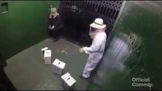 Bee Attack In The Elevator PRANK 929152 YouTubeMix