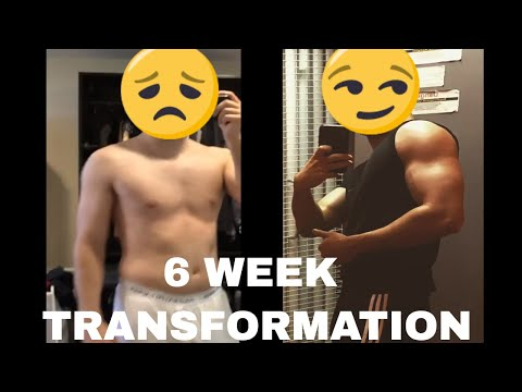 MY 6 WEEK FITNESS TRANSFORMATION