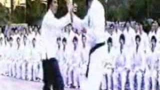 وسيم ناصر يقدم لكم بروسلي في فيلم داخل التنين عوريف