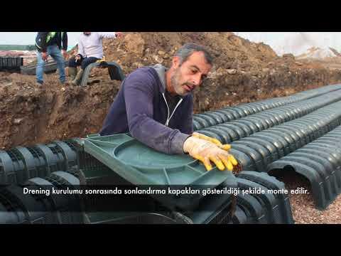DRENING: Bostanlı Sahil Kordon Boyu, Ladin Peyzaj