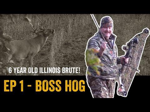 "ILLINOIS BRUTE WHITETAIL BUCK w/ BOW | ""Boss Hog"" | ADVANTAGE WHITETAIL | Episode 1"