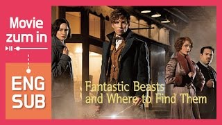 Review Fantastic Beasts And Where To Find Them ENG SUB Spoiler Free 2016 Movie Zum In
