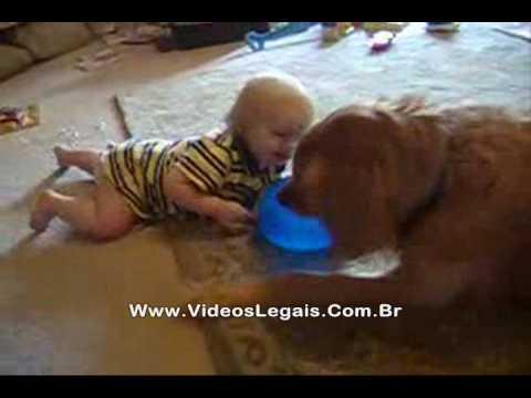 Bebê se diverte com cachorro brincalhão!