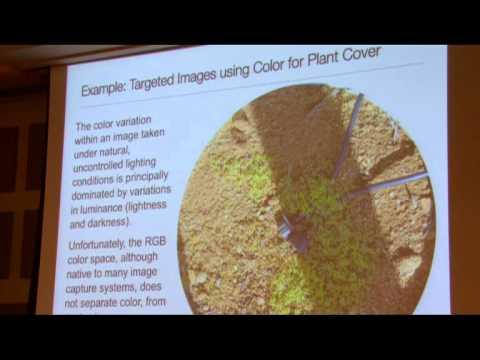 Image Processing erstellen Ökologische und Environmental Data