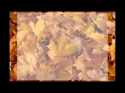 Huckleberry Friends - Podzimnění