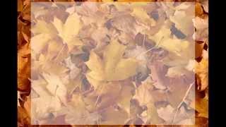 Video Podzimnění