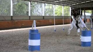 Limpinwood Australia  City pictures : Working Equitation Clinic - Australia
