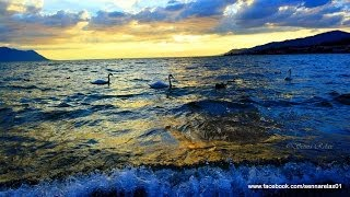Relax Music - Meditation Zen Music - Special Happy New Year 2014 - Relajación Música