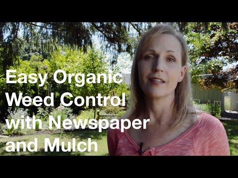 stende fogli di giornale in giardino: ecco un trucco salva tempo!