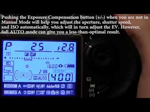 DSLR Basics: Stops and Metering