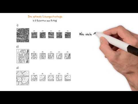 Die optimale Lösungsstrategie (Vorschau) - TMS/EMS Test
