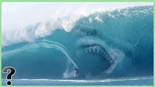 Video What If Megalodon Sharks Didn't Go Extinct? MP3, 3GP, MP4, WEBM, AVI, FLV Juni 2018