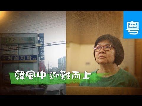電視節目 TV1463 韓風中迎難而上 (HD粵語) (韓國系列)