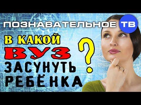 В какой ВУЗ засунуть ребёнка (Познавательное ТВ Михаил Величко) - DomaVideo.Ru