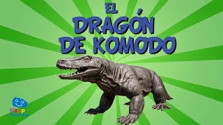 Hola amigos, bienvenidos a un nuevo vídeo de Happy Learning, Hoy vamos a conocer al lagarto más grande del mundo …  al Dragón de Komodo. Los Dragones de Komodo fueron descubiertos en  algunas islas de Indonesia en el año 1910, y pese a que no escupen fuego por la boca, ni vuelan son unos animales muy peligrosos.Estos grandes reptiles, como todos los reptiles, se reproducen por huevos, como estos pequeños cocodrilos. El cuerpo de los dragones de Komodo están recubiertos por unas gruesas y duras escamas que los protegen de cualquier peligro.Cuando son adultos pueden llegar a medir hasta 3 metros de largo y pesar más de 90 kilos.  Son carnívoros y sus mandíbulas son anchas, fuertes y poderosas. En la boca tienen cerca de 60 dientes en forma de sierra con los que desgarran la carne de sus presas. Su saliva es muy infecciosa, casi venenosa. Cuando muerden a sus presas éstas rápidamente quedan infectadas y mueren. Son capaces de comer hasta el 80% de su peso en una sola comida.  ¡¡ Menudos comilones están hechos !!Después de comer tanto tienen que descansar un buen rato como este que se está echando una buena siestecita.Suelen alimentarse de carroña, pero también son grandes cazadores capaces de detectar a sus presas a 10 kilómetros de distancia gracias a su gran lengua bífida. Los dragones de komodo aunque no lo parezcan son unos verdaderos atletas, pueden escalar árboles, son excelentes nadadores y pueden llegar a correr a 29 kilómetros por hora… Si no que se lo pregunten a este ciervo este ciervo que se escapa por los pelos…Estos grandes lagartos pueden llegar a vivir hasta 50 años pero la verdad es que no suelen vivir tanto tiempo; cada vez quedan menos, cada vez tienen menos sitios donde vivir; además muchos son cazados de manera ilegal para venderlos en el mercado negro o para quedarse con su piel. En la actualidad quedan aproximadamente cuatro mil lagartos de komodo en el mundo, sin duda están en grave peligro de extinción.Desde Happy Learning, como siempre, os ped