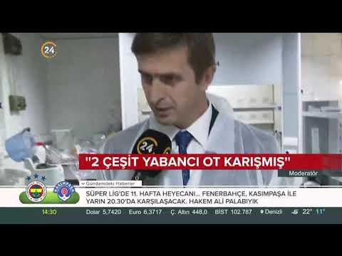 İstanbul Gıda Kontrol Lab. Müdürümüzün Ispanak zehirlenmesi hakkında yaptığı açıklaması.