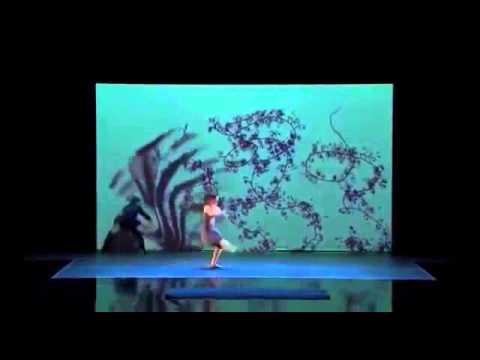 Красивый танец теней на американском шоу талантов 2014 (видео)