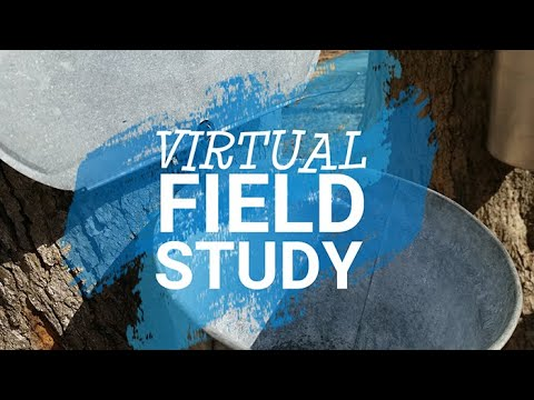 Virtual Field Study: Festival of the Sugar Maples