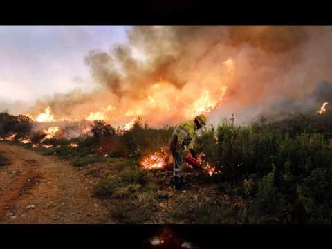 Incendios Valencia 2012