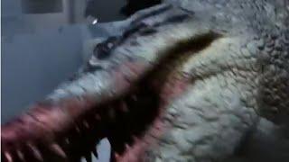 Nonton All Creature Effects  1  Lake Placid Vs Anaconda Film Subtitle Indonesia Streaming Movie Download