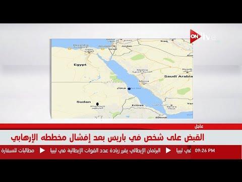 """خبير استراتيجي:تحالف مصر مع إريتريا: """"منحنا مساحة في البحر الأحمر"""""""