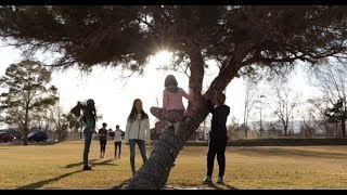 Video To Be His Child (new song by Shawna Belt Edwards) MP3, 3GP, MP4, WEBM, AVI, FLV Januari 2019