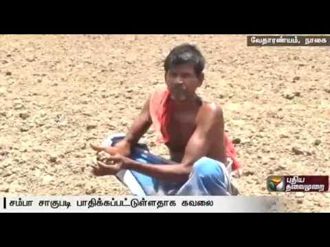 Government-should-take-urgent-steps-to-release-water-from-Mettur-say-farmers-in-Nagapattinam