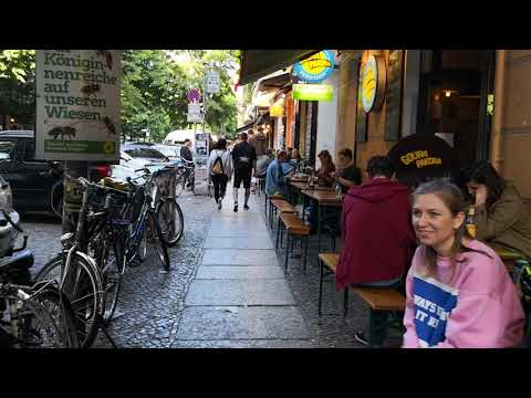 Hundebetreuung Berlin Friedrichshain