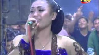 "download lagu download musik download mp3 areva terbaru ""DIANA""- ""areva"" live teken by purnama video shooting"