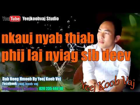 nkauj nyab thiab phij laj nyiag sib deev 11 / 14 / 2017 (видео)