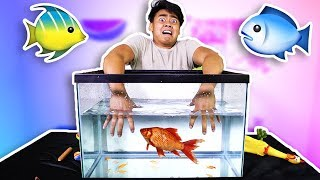 WHATS IN THE BOX - UNDERWATER EDITION!