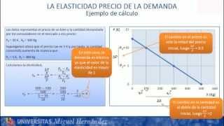 Umh1184 2012-13 Lec005 Las Elasticidades