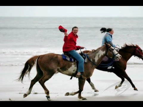 Horseback Riding in Frisco, NC
