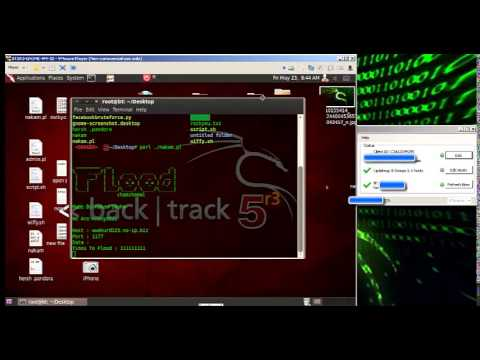 Flood no-ip in backtrack5 r3 (видео)