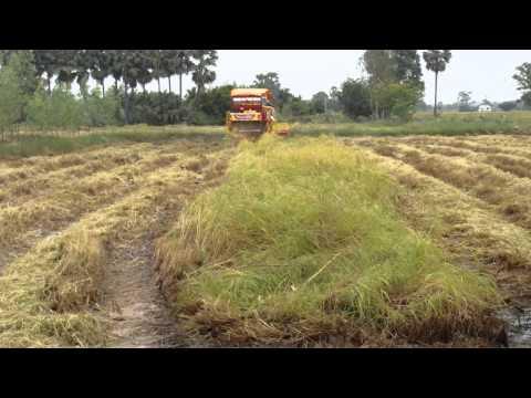 รถเกี่ยวเกษตรพัฒนา
