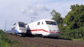 Main-Neckar-Bahn 2016 ICE, TGV, Regionalzüge, Güterzüge