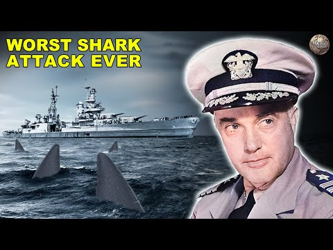 The Story of the Deadliest Shark Attack in US History