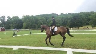 Team Netherwood Dominates Old Chatham Horse Trials