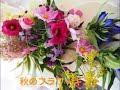 秋のフラワーギフト|9月 10月 11月|花ギフト 秋に花の贈り物