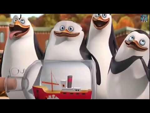 Pingwiny z Madagaskaru Nie wolno prześledzić PL Cały Odcinek
